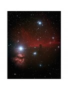 Mike Scroger's AT6IN image of the Horsehead and Flame Nebulas.