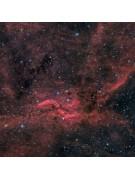 "11"" Celestron RASA image by John Davis of the Propeller Nebula (a 900x900 pixel portion of the 1600x1153 pixel original."